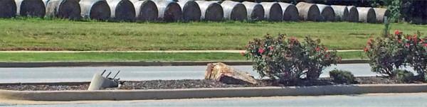 bad-pruning-hay-bales